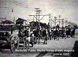 Berkeley Public Works horses